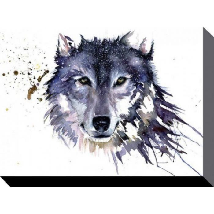 loups poster reproduction sur toile tendue sur ch ssis loup de n ge sarah stokes 60 x 80 cm. Black Bedroom Furniture Sets. Home Design Ideas