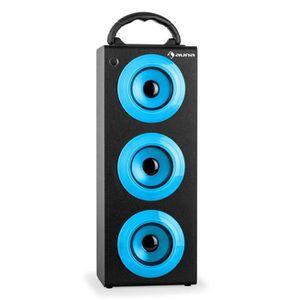 PACK SONO auna Beachboy XXL Système de sono Bluetooth mobile
