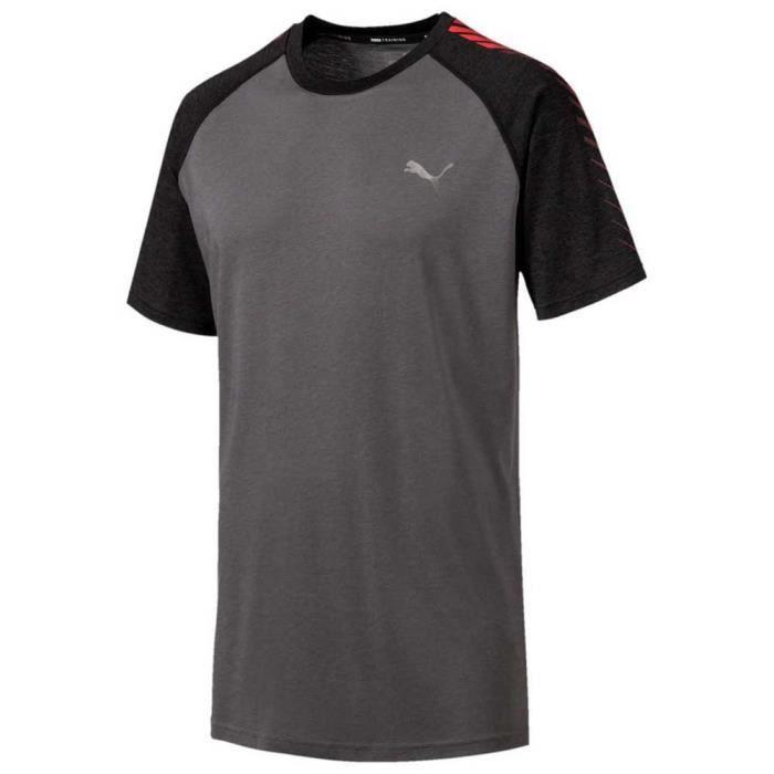 Vêtements Homme T-Shirts Puma Collective
