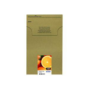 CARTOUCHE IMPRIMANTE EPSON Cartouche d'encre originale Multipack 33 - P