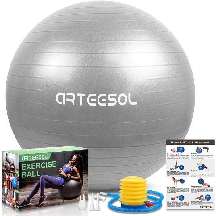 arteesol Ballon Fitness, Swiss Ball, Ballon Grossesse, Ballon Gym Ball Yoga Ballon d'exercice Balle de 45cm-55cm-65cm-75cm-85cm A178