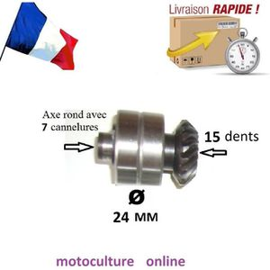 TAILLE-HAIE Pignon /Roulement /Axe pour taille haie orientable