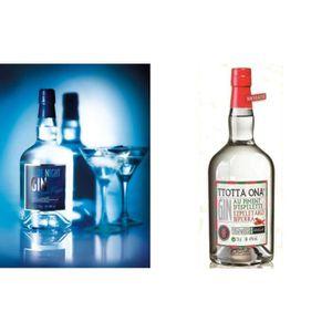 GIN duo gin 70cl louis roque souillac