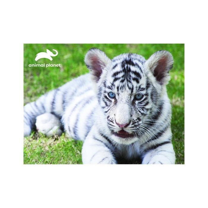 Puzzle Animal Planet White Tiger 63 pièces