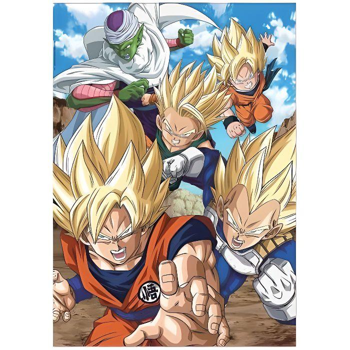 Puzzle Dragon Ball Z Songoten Et Piccolo - 500 Pieces - Puzzle Educa : Collection Dessins Animes