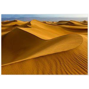 AFFICHE - POSTER Panorama® Poster Colorado Dunes de Sable 100 x 70