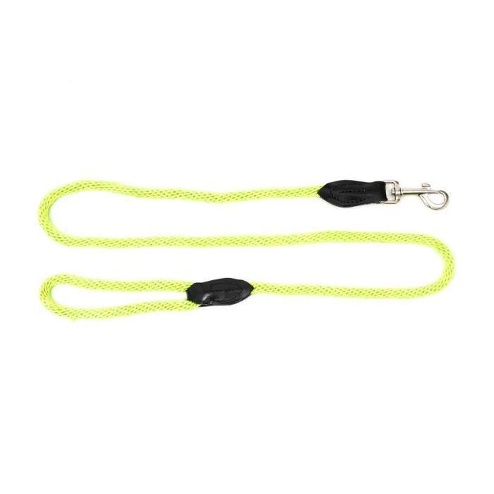Laisse pour chien nylon fin longueur 1,3 m vert anis