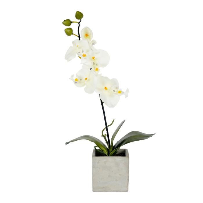 Orchid e artificielle pot en pierre blanc achat for Www homee