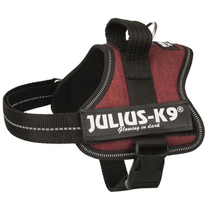 JULIUS K9 Harnais Power Mini–M : 51–67 cm - 28 mm - Rouge bordeaux - Pour chien
