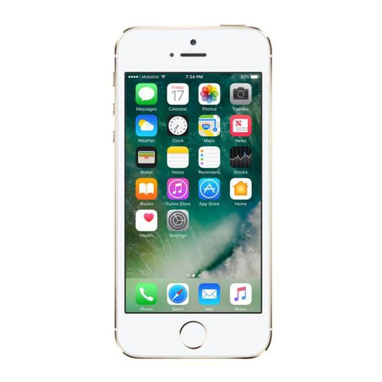 Renewd Apple iPhone 5S recondionné - 64GB Or, 10,2 cm (4