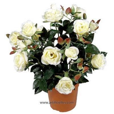 Rosier roses en pot blanc champagne artificiel achat - Petit rosier en pot ...