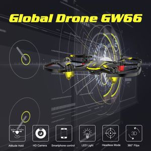 DRONE DRONE Le drone global du drone GW66 mini avec la c