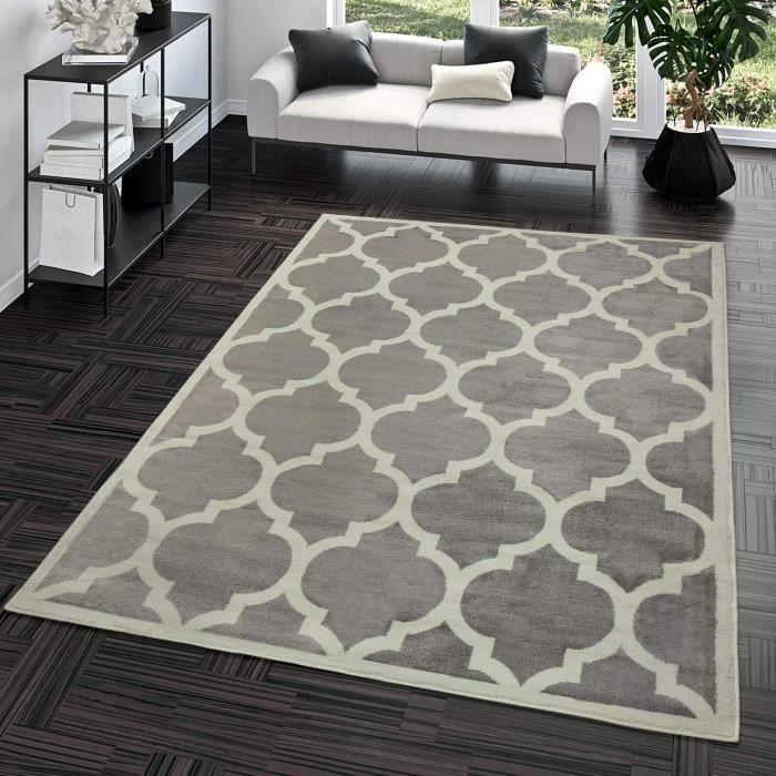 TT Home Tapis Poils Ras Moderne Design Marocain Salon Intérieur Tendance Gris, Dimension:160x220 cm