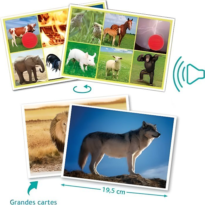 Akros - Loto sonore des animaux ( AK-20620 )