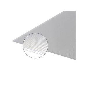 PLAQUE - BARDEAU Plaque polycarbonate alvéolaire 10mm - L: 2 m - l: