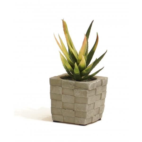 plante verte artificielle succulent vase rectangulaire. Black Bedroom Furniture Sets. Home Design Ideas