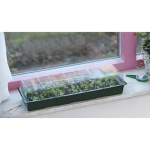 PACK GERMINATION Mini serre de culture 15,5x49x10 cm