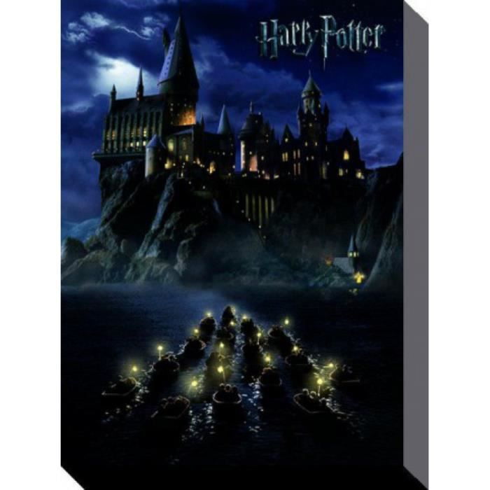 tableau toile harry potter poster reproduction sur toile ten. Black Bedroom Furniture Sets. Home Design Ideas
