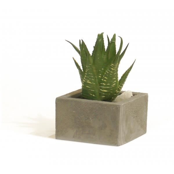 Plante verte artificielle mini cactus vase achat for Mini plante artificielle