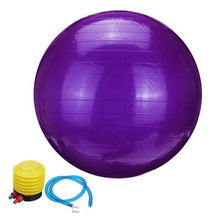 Ballon de Yoga 55cm Fitness Sport Exercice + Pompe Violet