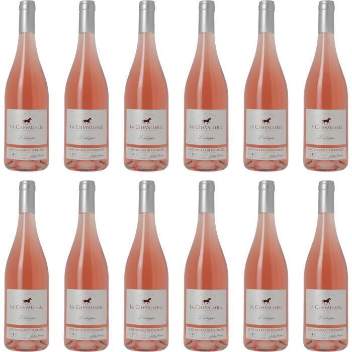 Saint Nicolas de Bourgueil - L'échappée - Vin rosé du Val de Loire - 100% cabernet franc - Lot de 12 bouteilles