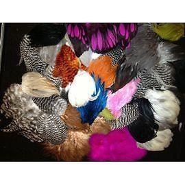 Enorme lot de plumes de coq poules d coration achat for Poules decoration