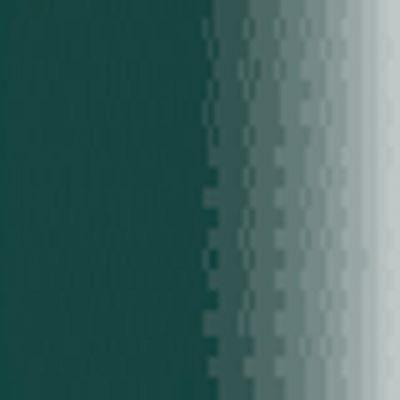 Vert Noir P021 Gamme Air - Pot de 17ml - Prince Au