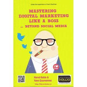 LIVRE GESTION Mastering digital marketing like a boss... beyond