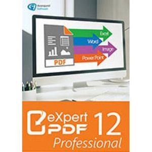 UTILITAIRE À TÉLÉCHARGER Utilitaire PC- Expert PDF 12 Pro (Code STEAM en té