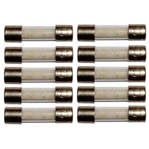 Lot de 10 fusibles temporisés T 2A 250V 5x20mm