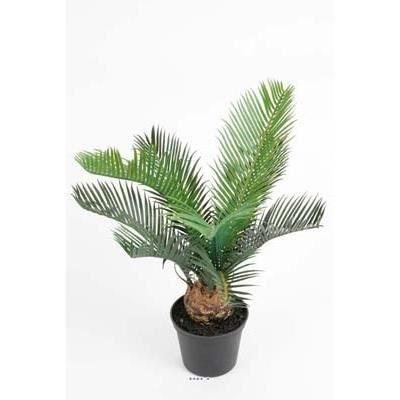 palmier cycas artificiel en pot h 35 cm superbe achat. Black Bedroom Furniture Sets. Home Design Ideas