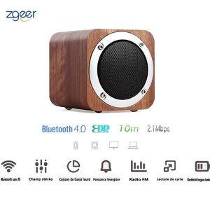 ENCEINTE NOMADE Enceinte Bluetooth Portable, Enceinte sans fil ,Ha
