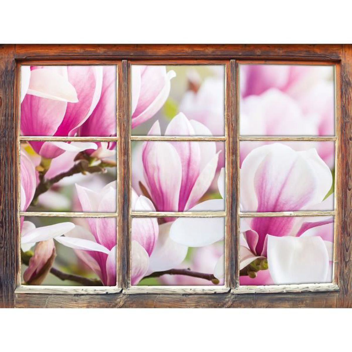 Fine fleur rose couleur de la bordure fen tre en 3d look for Decoration bordure fenetre