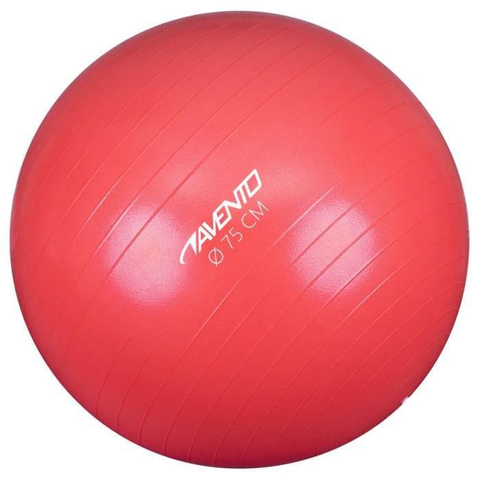 Avento Ballon de fitness-d'exercice - Boule de yoga Diamètre 75 cm Rose☆☆7332