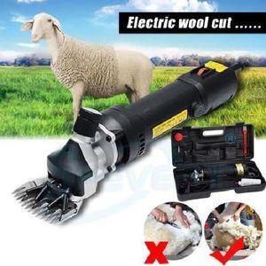 TONDEUSE POUR ANIMAL PTT 350W Tondeuse pour Animal électrique Professio