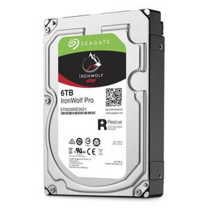 DISQUE DUR INTERNE SEAGATE NAS HDD Iron Wolf Pro Enterprise 6To - ST6