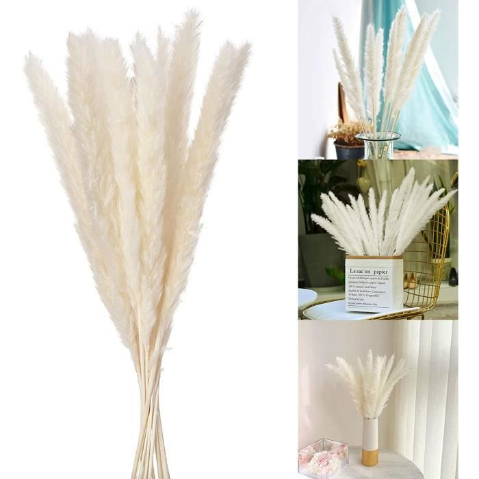 Wisolt Lot de 30 Herbes de Pampas S&eacutech&eacutees - Bouquet d'Herbe de Pampas Blanche Artificielle pour Maison Salon Mariag91