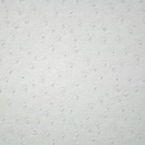 TISSU Simili Cuir Peau d'Autruche Blanc - Tissu au mètre