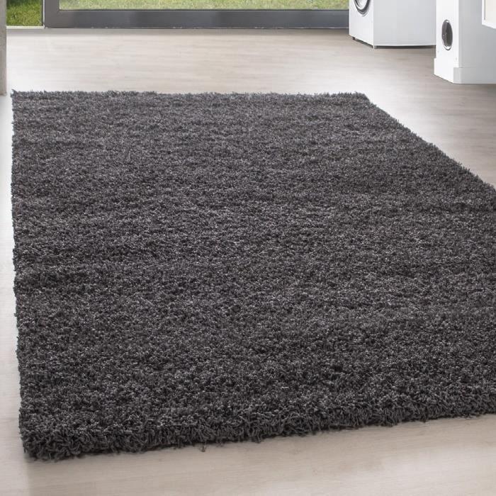TAPIS Shaggy Shaggy Long pile pas cher tapis gris salon