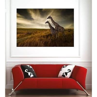affiche poster d coration murale girafes r f 26390899 6 dimensions d clinaisons papier photo. Black Bedroom Furniture Sets. Home Design Ideas