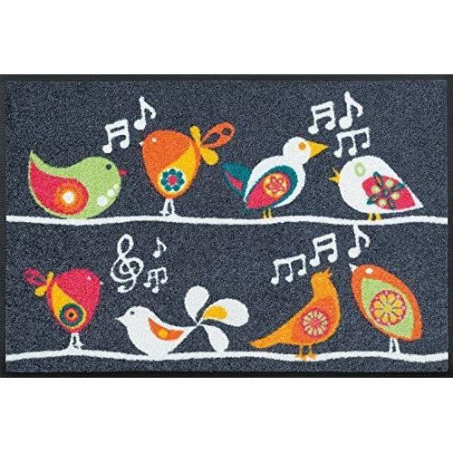 Wash dry 068235 singing birds tapis nylon caoutchouc for Tapis cuisine wash and dry