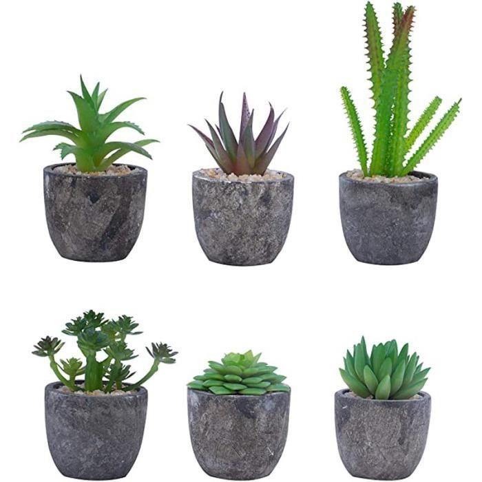 Plante Artificielle (Lot de 6) - Mini Fausse Plante Succulente avec Pots - Petite Plante Décorative en Plastique - Parfaites