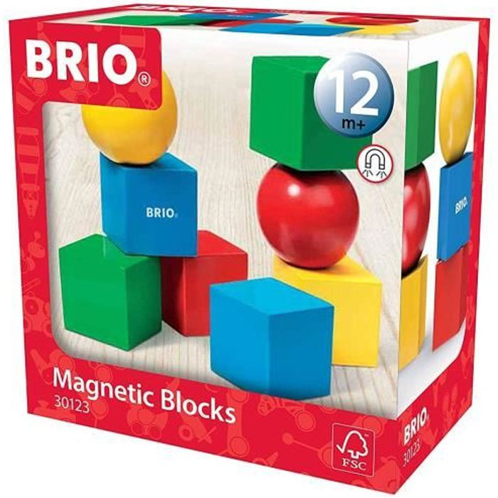 Blocs de construction magnétiques