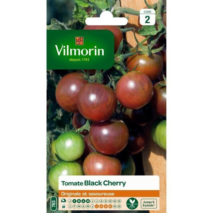 GRAINE - SEMENCE VILMORIN Tomate Black Cherry Sachet de graines