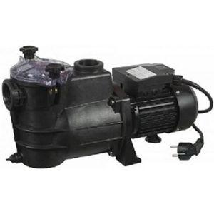 POMPE - FILTRATION  Pompe speciale piscine 1000 watts