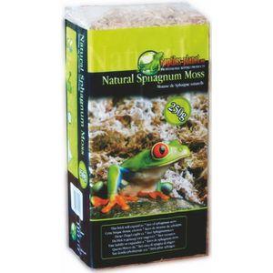 DÉCO VÉGÉTALE - RACINE Substrat pour Reptiles Natural Sphagnum Moss 250 g