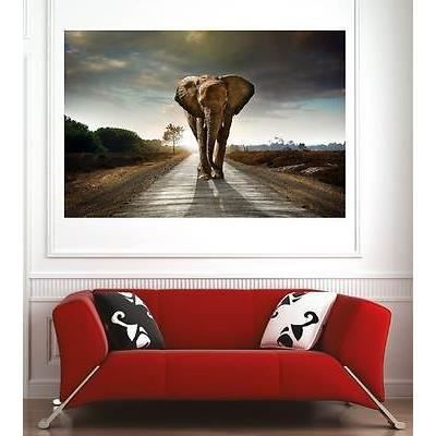 poster mural elephant achat vente poster mural elephant pas cher cdiscount. Black Bedroom Furniture Sets. Home Design Ideas