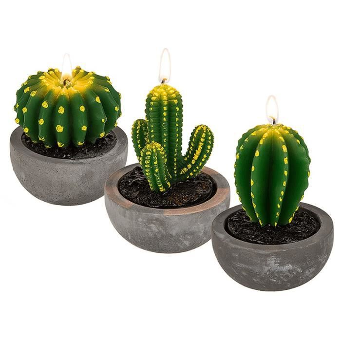 bougie cactus 10cm achat vente bougie d corative cdiscount. Black Bedroom Furniture Sets. Home Design Ideas