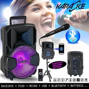 PACK SONO Pack Karaoké Enceinte USB SD BLUETOOTH + PIED + MI