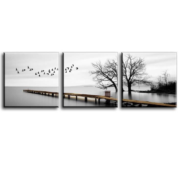 Les Oiseaux volent dans la Nature Photo sur Toile pr/êt Couvert Taille Art Print Peinture Murale 60x40 cm
